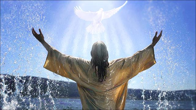 Dopen Volwassendoop Betekenis Ontdek God