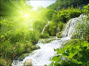 stromen van levend water