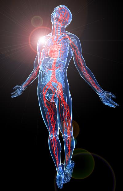 wie is god lichaam