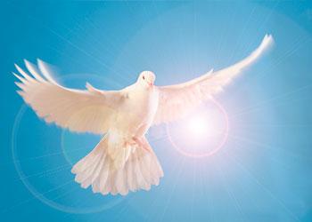 gebed bidden heilige geest