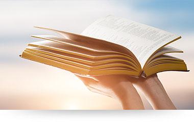 bijbel handen