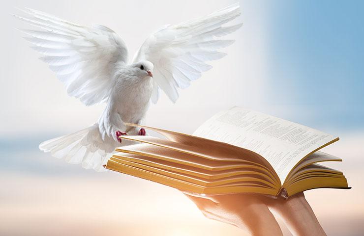 heilige geest gods woord